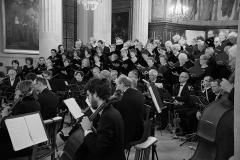 08/06/2017 St Symphorien VERSAILLES